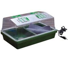 Stabilire il tipo di coltivazione da impiantare orto di for Serra da balcone leroy merlin